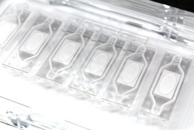 Organ-on-a-chip top and bottom layers